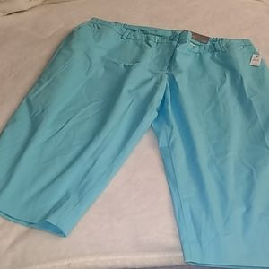 Talbot's plus size Capri pants 22WP